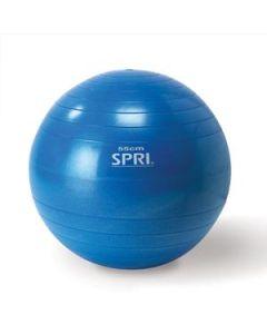 Spri - 55 CM Xercise Ball